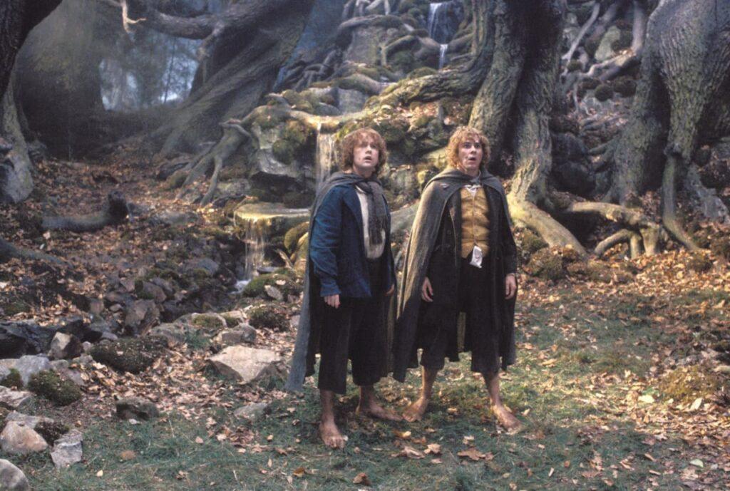مری و پیپین نزدیک بود در فیلم ارباب حلقهها یک صحنه برهنه داشته باشند