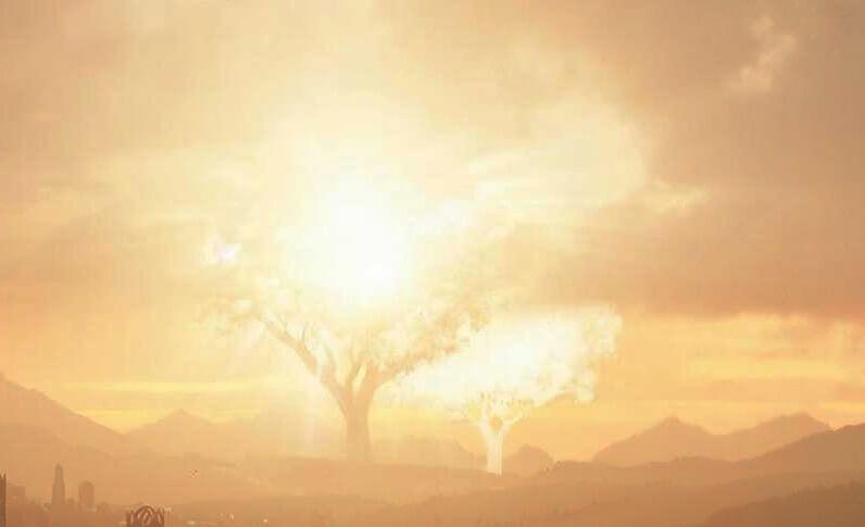 دو درخت والینور سریال ارباب حلقهها